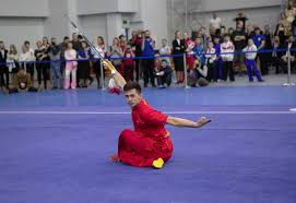 Moscow <b>Wushu</b> Stars 2020 - English fund
