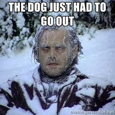 The dog just had to go out - Frozen Jack | Meme Generator via Relatably.com