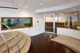 large wall office aquarium aquarium office