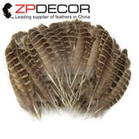 Wholesale <b>Ringneck</b> Feathers in Bulk from the Best <b>Ringneck</b> ...
