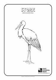 Small Picture Angry Coloring Pictures Of Birds Birds Coloring Pages Archives