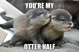 Otter half memes | quickmeme via Relatably.com