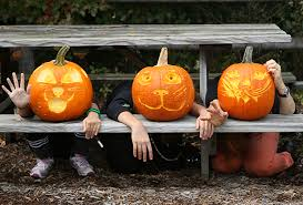 Harvest Fests, Pumpkin <b>Patches</b>, and Hayrides Right Here in NYC ...