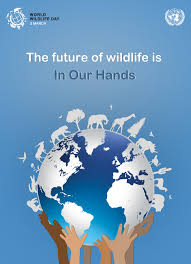 the future of wildlife is in our hands the future of elephants is the future of wildlife is in our hands the future of elephants is in our hands n palm oil council mpoc official website
