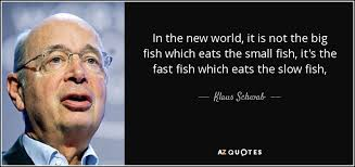 "Image result for ""small fish quotations"