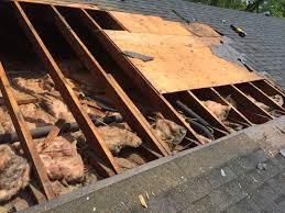 roof repair place: here is the same roof with the rotted dark water stained plywood removed leaving only the good plywood in place see the insulation under the leak