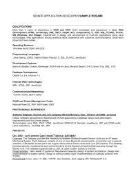 skills additional information and references listing computer resume qualities and skills leadership skill list examples of listing skills on resume examples listing technical