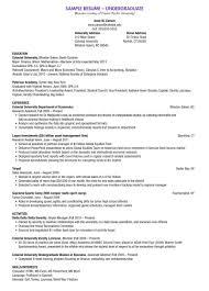 undergraduate research resume research resume template