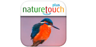 Identify live <b>bird</b> songs, naturetouch - Apps on Google Play