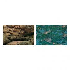 aquarium background pictures
