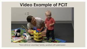 <b>Parent</b>-<b>Child Interaction</b> Therapy (<b>PCIT</b>) on child behavior problems ...