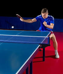 <b>теннисный стол donic</b> indoor