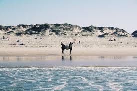 <b>Enjoy your day</b> — Enjoy Surf School