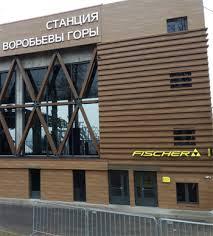 <b>Горнолыжные трассовые</b> палки Fischer купить в официальном ...