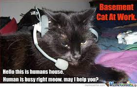 Human Is Busy Right Meow by phil.flash.9 - Meme Center via Relatably.com