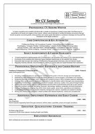resume examples by professional resume writers scottsdale resume writers and tempe do my resumenet