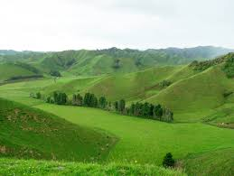 hills like white elephants related keywords suggestions hills file taranaki hills jpg