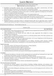information technology resume samplesproject manager resume