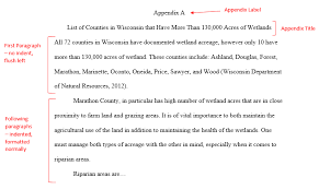 How to Write an Appendix   Howcast   The best how to videos on the web Ipul lorexddnsFree Examples Essay And Paper   lorexddns This image shows a references page in CMS