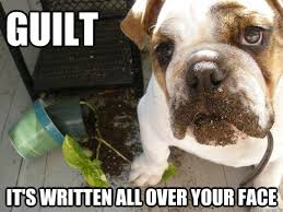 I Swear this is not what it looks like - Guilt Dog - quickmeme via Relatably.com