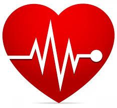 「心拍数と調節」の画像検索結果