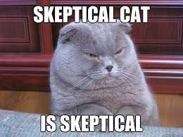 skeptical cat is skeptical memes | quickmeme via Relatably.com
