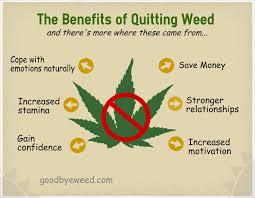 Kết quả hình ảnh cho quit marijuana