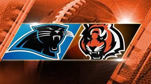 Image result for bengals panthers