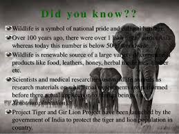 wildlife conservation in indiappt  various ecosystems  did you know wildlife