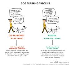 behavior training resources greater st louis training club traditional vs modern behavior modification handout by lili chin
