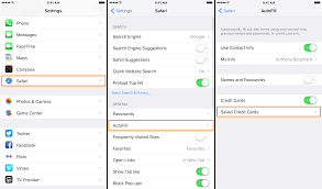how to remove credit card information from your iphone 3 tap on the autofill cell