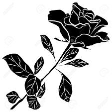 """Résultat de recherche d'images pour """"barre séparation Rose noire"""""""
