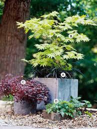 Small Picture Stunning Shade Garden Design Ideas