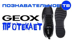 Почему я выкинул ботинки <b>GEOX</b> (Познавательное ТВ, Артём ...