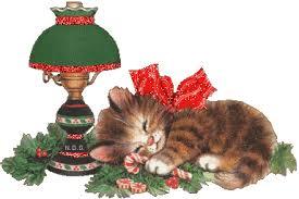 """Résultat de recherche d'images pour """"gif bonbons chats"""""""
