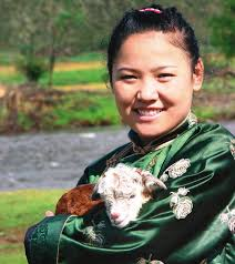 mongolia human development report 2011 from vulnerability to ...