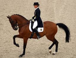 dressage shows 2013