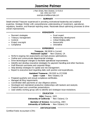 best treasurer resume example livecareer create my resume