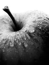 1000 ideas about black white on pinterest color splash photography and wmbw awesome black white