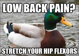Low Back Pain? Stretch Your Hip Flexors - Actual Advice Mallard ... via Relatably.com