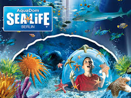 Image result for aquadom and sealife berlin