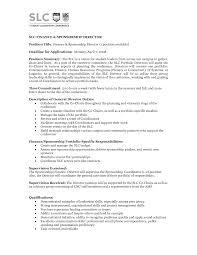 job description sample ceo job description sample