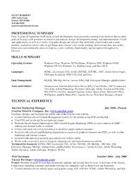 resume summary resumes example professional resume skills b a the cover letter resume summary resumes example professional resume skills b a the most of for resumesummary resume