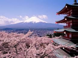 「日本賞櫻」的圖片搜尋結果