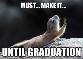 Image result for senior year meme college hard