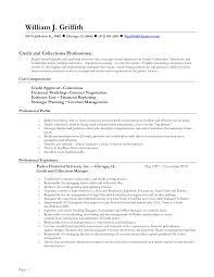 Entry Level Insurance Agent Resume Sample Insurance Agent Resume       insurance agent resume