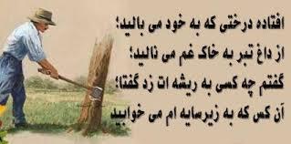 Image result for تصاویر حکمت آمیز