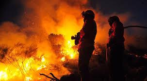 Incêndio em Tabuaço reduzido a uma frente
