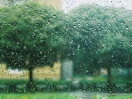 a rainy day in summer essay