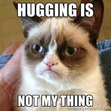 HUGGING is NOT my thing - Grumpy Cat | Meme Generator via Relatably.com
